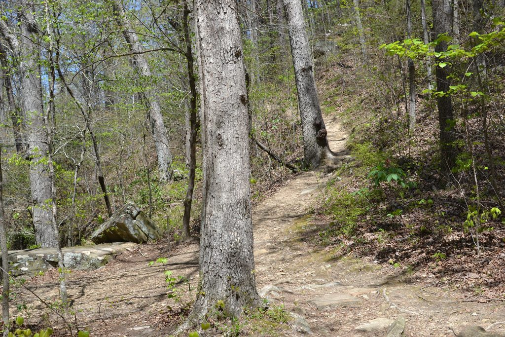 Cane Creek Canyon Hiking Trail, Tuscumbia, Alabama